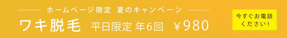 ホームページ限定  夏のキャンペーン ワキ脱毛 平日限定 年6回 ¥980 今すぐお電話ください!