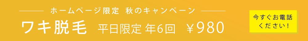 ホームページ限定  秋のキャンペーン ワキ脱毛 平日限定 年6回 ¥980 今すぐお電話ください!
